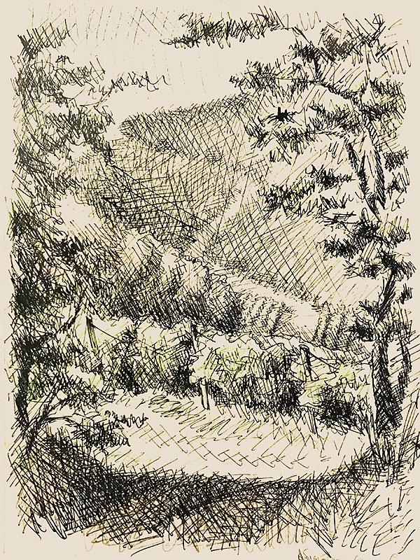 """""""Абрау Дюрсо. Виноградники"""" 1983г. Цветной карандаш, тушь. 42,5х30см"""
