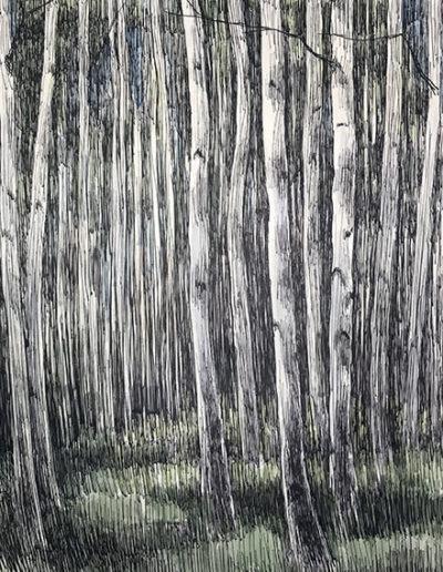 """""""Стволы. Березы"""" из серии «Деревья» 1985г. Бумага, акварель, тушь. 61х43 см"""