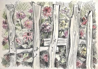"""Цветы за забором"" 1993г. Цветной карандаш, тушь. 30х42,5см"