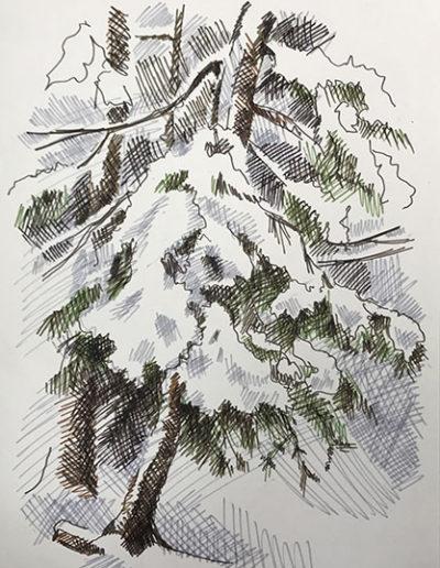 """""""Елки в снегу. Репино"""" из серии «Репино» 1980г. Бумага, цветной фломастер. 43х30,5 см"""