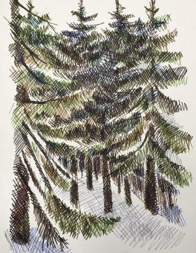 """""""Елки. Репино copy"""" из серии «Репино» 1980г. Бумага, цветной фломастер. 43х30,5 см"""