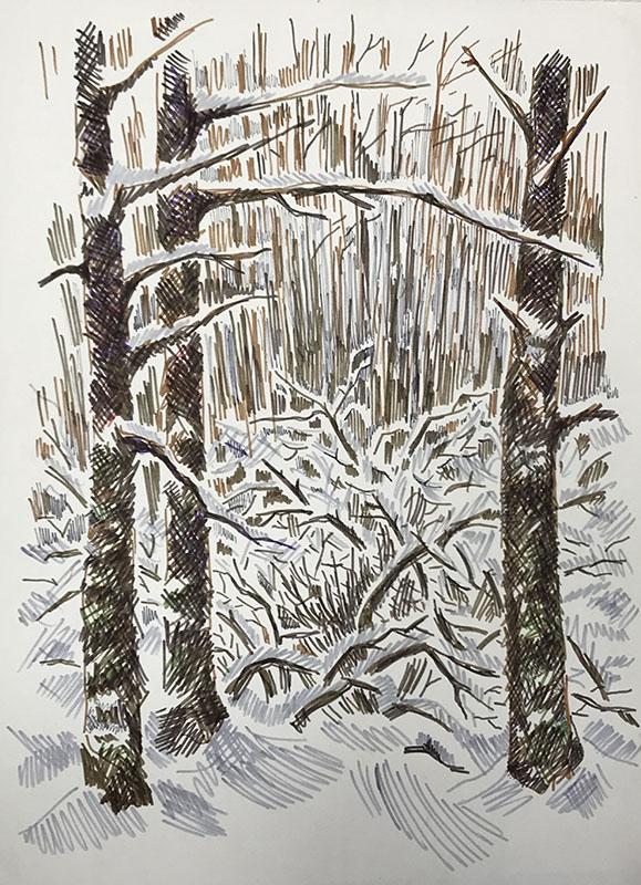 """Зимний лес. Репино"" из серии «Репино» 1980г. Бумага, цветной фломастер. 43х30,5 см"