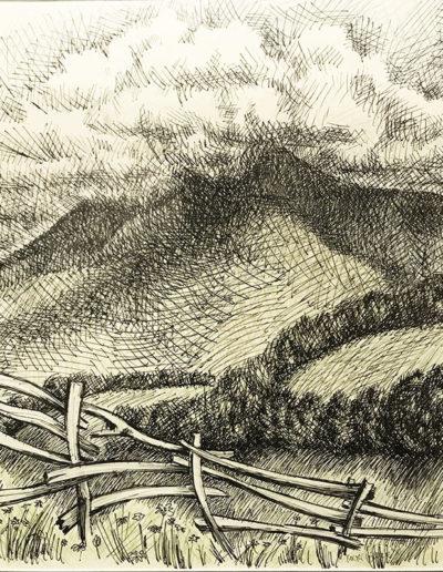 """""""Изгородь и облака"""" из серии «Хоста» 1990г. Бумага, цветной карандаш, тушь. 48х40 см"""