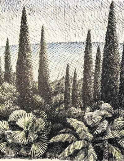 """""""Кипарисы"""" из серии «Хоста» 1990г. Бумага, цветной карандаш, тушь. 48х40см"""