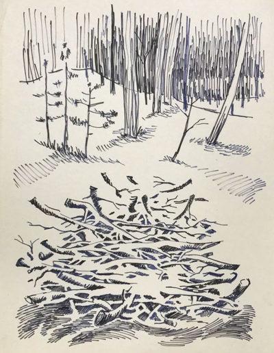 """""""Ветки в лесу"""" из серии «Наброски» 1990г. Бумага, ручка. 20х14,5 см"""