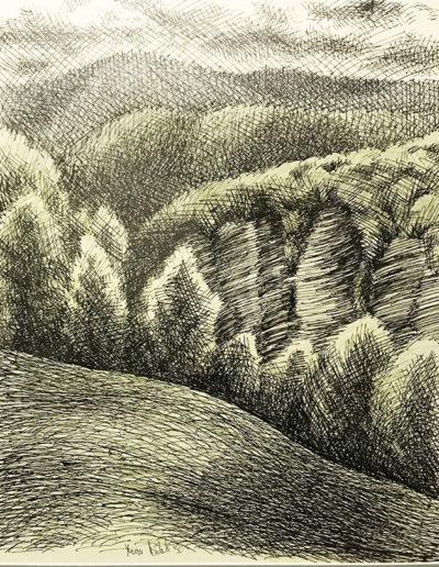 """""""Холмы"""" из серии «Хоста» 1990г. Бумага, цветной карандаш, тушь. 48х40 см"""