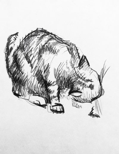 """Кот ест"""