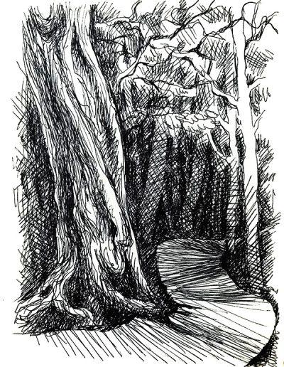 """Набросок. """"Лес в горах №2"""""""