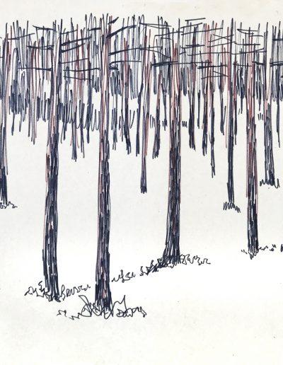 """Финский залив. """"Зимний лес"""""""